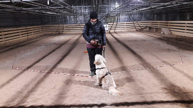 Agility und Hundesport in Zirndorf/Fürth/Nürnberg mit Desiree Höck – Hundetraining in Cadolzburg bei Nürnberg/Fürth